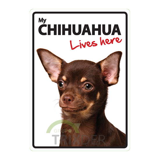 Señal A5 'Chihuahua - Lives Here', 14.8 x 21 cm