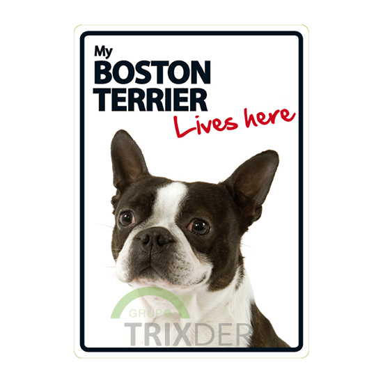 Señal A5 'Boston Terrier - Lives here', 14.8x21cm